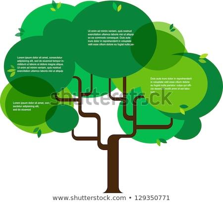 3D · árbol · dólares · resumen · diseno · cuadro - foto stock © anatolym