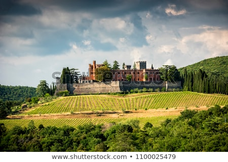 Castle of Brolio Stock photo © prill