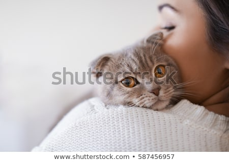 cat woman stock photo © dolgachov