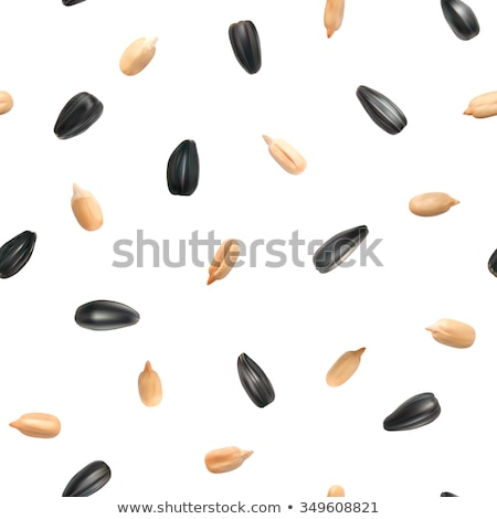 Sunflower Seeds Seamless Texture Stock photo © Suljo