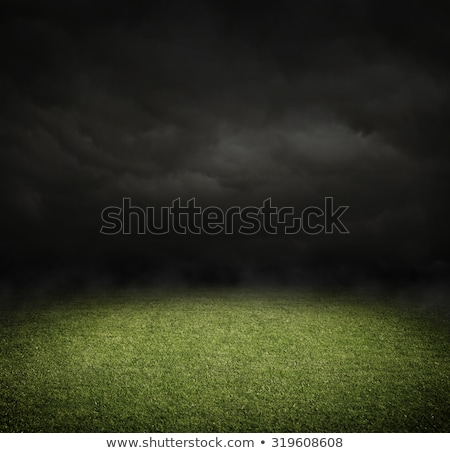 football pitch, with dark clouds Stock photo © mike_expert