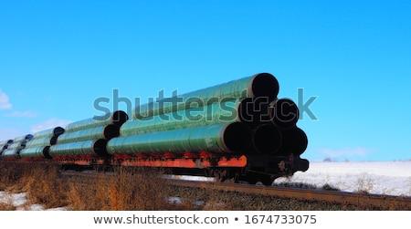 железная дорога вертикальный поезд Сток-фото © ABBPhoto