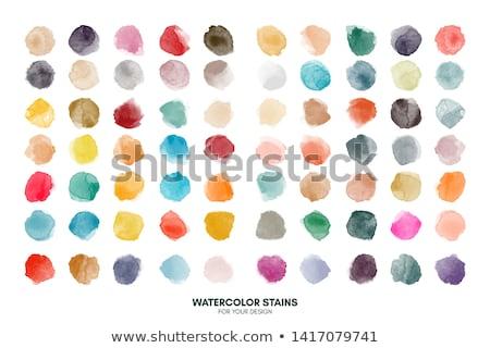 Color circle set Stock photo © m_pavlov