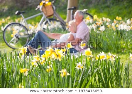 Pár megnyugtató mező tavasz nárciszok virágok Stock fotó © monkey_business