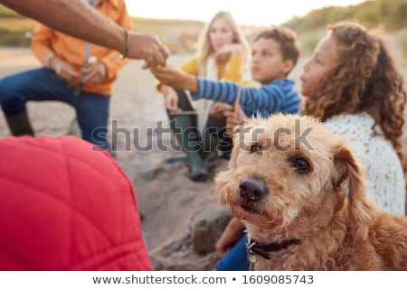 family sitting on winter beach stock photo © monkey_business