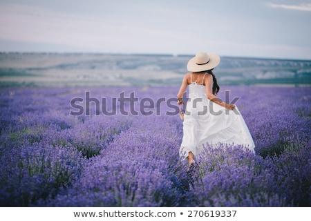 ストックフォト: 女性 · 紫色 · ドレス · 帽子 · バスケット · ラベンダー畑