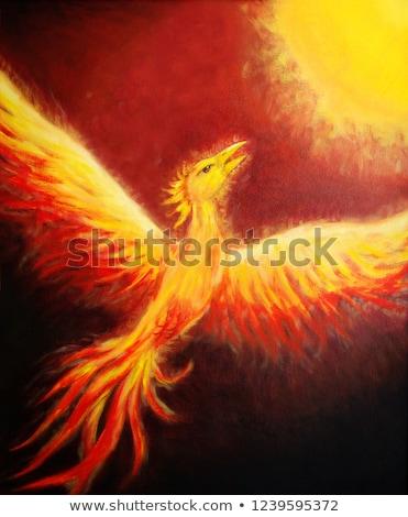 Vliegen phoenix decoratief mooie veer Stockfoto © Soleil