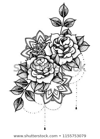 güller · çerçeve · dövme · stil · dizayn · ayarlamak - stok fotoğraf © 13UG13th