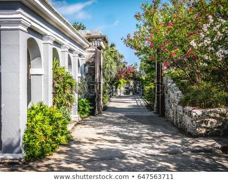 Bermuda Fort Canons Stock photo © arenacreative