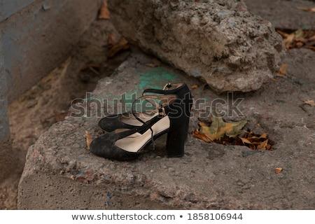 Vogue and rubbish Stock photo © Novic