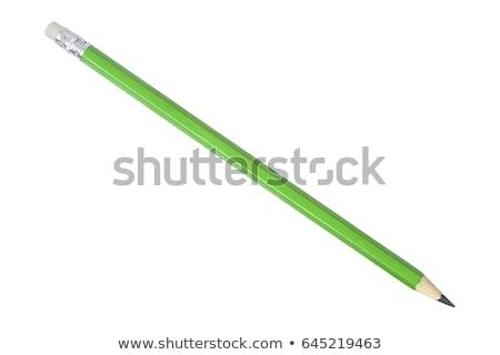 Verde lápis rosa haste espinho folhas Foto stock © designsstock