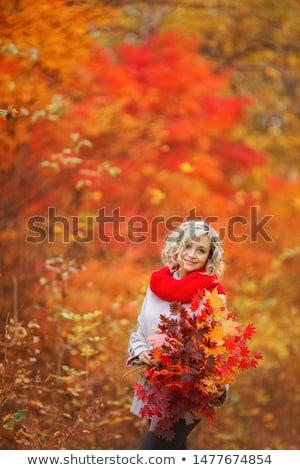mágikus · arany · ősz · szőke · nő · lány · portré - stock fotó © Kor