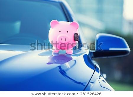 деньги автомобилей многие Мир монетами Сток-фото © vinnstock