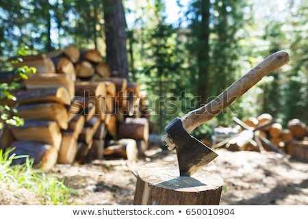 Old axe standing against a woodpile Stock photo © Mps197