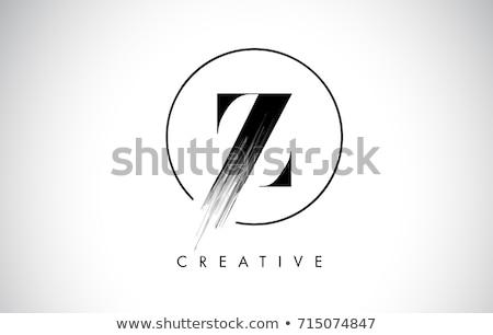 daire · ikon · vektör · dizayn · mektup - stok fotoğraf © blaskorizov