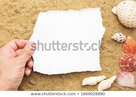 Felső kilátás névjegy forró tengerparti homok copy space Stock fotó © stevanovicigor