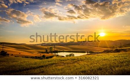 toscana · hills · casa · árvore · grama · natureza - foto stock © photocreo