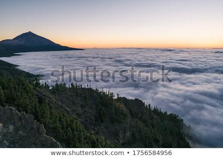 Peak of Teide in clouds  Stock photo © Digifoodstock