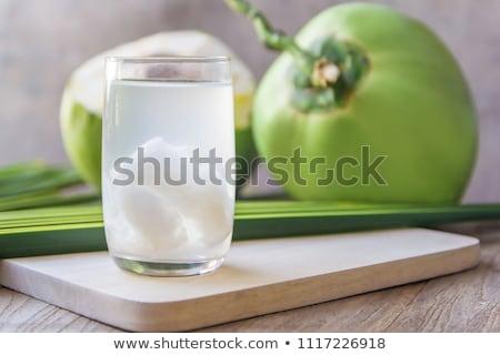 кокосового сока иллюстрация белый цветок Сток-фото © bluering