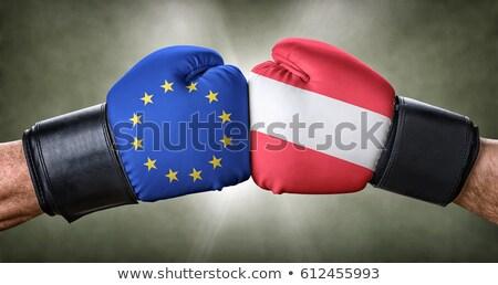 бокса матча европейский Союза Австрия бизнеса Сток-фото © Zerbor