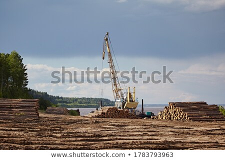 Unloading wood Stock photo © simply