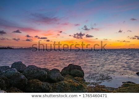 кобыла · пляж · воды · город · морем · горные - Сток-фото © frimufilms