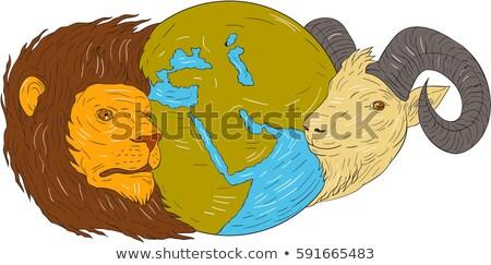 Oroszlán kos földgömb Közel-Kelet rajz rajz Stock fotó © patrimonio