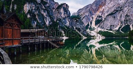 ストックフォト: 湖 · アルプス山脈 · 自然 · カラフル · 花 · ツリー