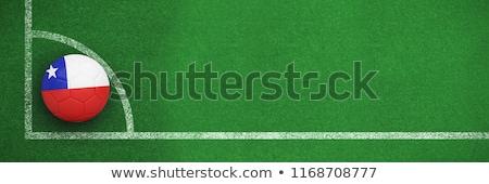 Futball Chile színek futballpálya terv futball Stock fotó © wavebreak_media