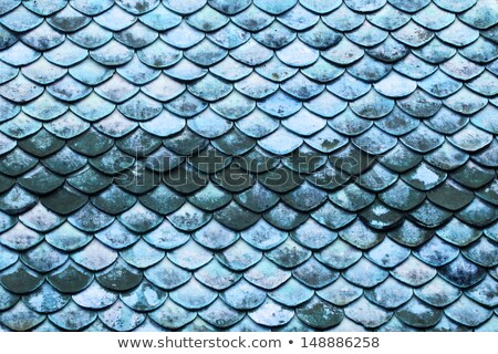 Seamless scale pattern. Abstract roof tiles background. Yellow squama texture Stock photo © ESSL