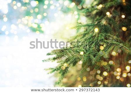 Navidad · decoraciones · colgante · nieve · jengibre · azul - foto stock © marilyna