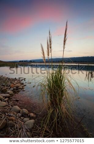naplemente · mögött · kék · hegyek · tükröződések · tó - stock fotó © lovleah