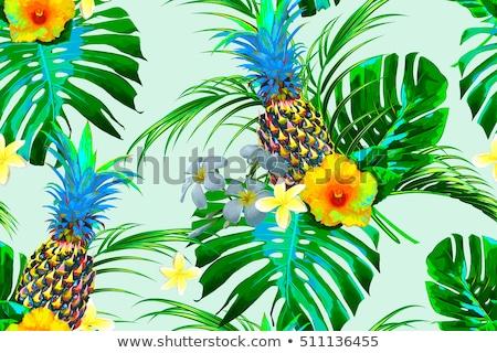 tropicales · été · palmier · jungle · feuille · modèle - photo stock © margolana