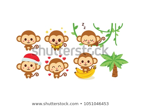 monkeys on liana at Christmas Stock photo © adrenalina