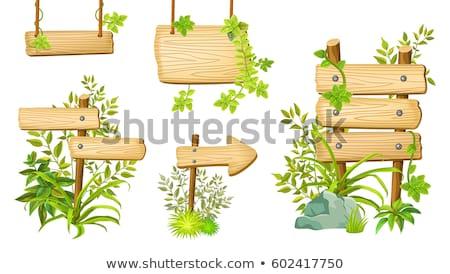 シーン 木製 標識 ジャングル 実例 森林 ストックフォト © colematt