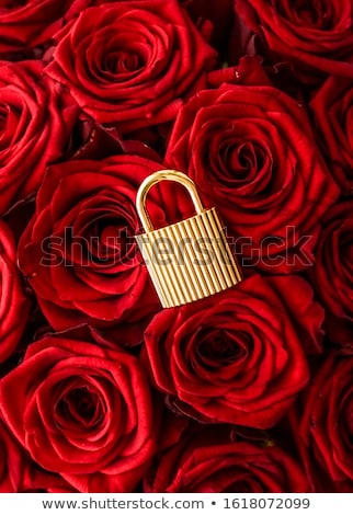 Love lock for Valentines Day card, golden padlock and luxury bou Stock photo © Anneleven