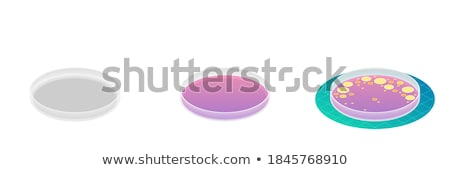 Positive Bacterium isometric icon vector illustration Stock photo © pikepicture