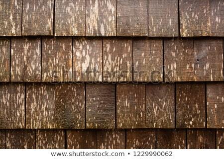 Old cedar shake wall background Stock photo © njnightsky