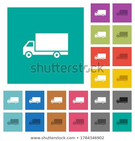простой цветами иллюстрация чистой профиль Сток-фото © lkeskinen