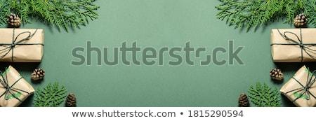 flor · corazón · banners · floral · colorido · hierba - foto stock © urchenkojulia