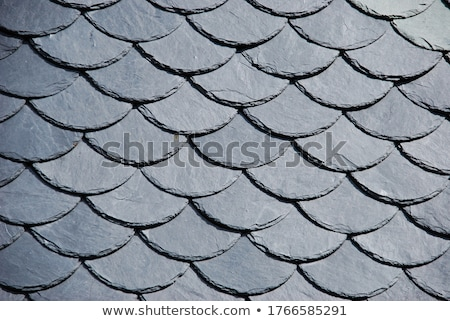 schist tiled roof detail Stock photo © prill