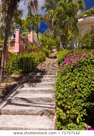 White painted steps Charlotte Amalie Stock photo © backyardproductions