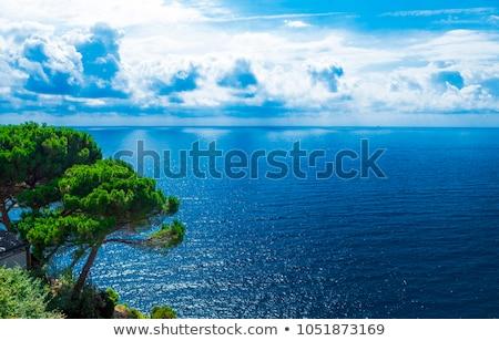 Cliff By The Adriatic Sea Stock fotó © mcherevan