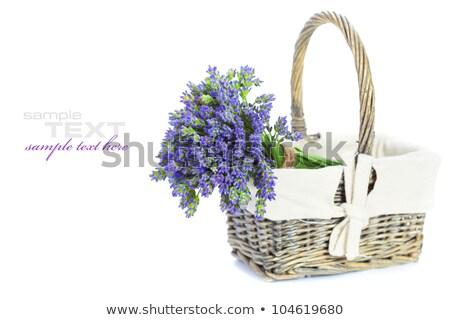 cesta · lavanda · buquê · roxo · flores - foto stock © juniart