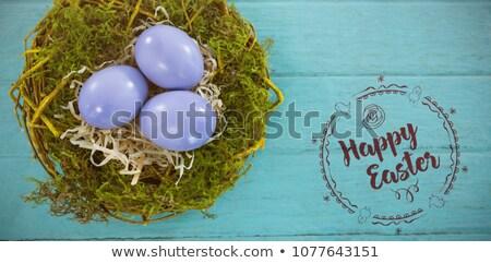 Reifer Mann gefärbt Ostereier Ostern Familie Frühling Stock foto © Pasiphae