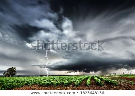 Thunder · Молния · области · облачный · небе · облака - Сток-фото © mike_expert