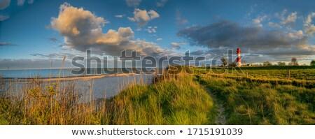 バルト海 · 冬 · 風の強い · 日 · 水 · 雲 - ストックフォト © juniart