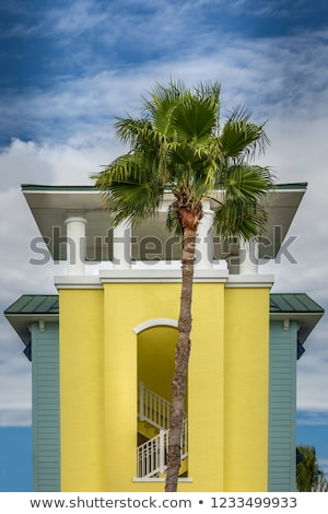 Gyönyörű házak art deco stílus dél Miami Stock fotó © meinzahn