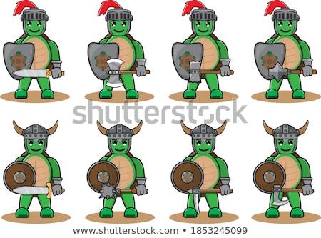 Comic Rounded Viking Shields Stock photo © benchart