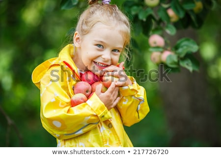 little girl with autumnal apple tree holding an apple Stock photo © phbcz